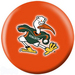 NCAA Miami Hurricanes 12 Only