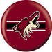 NHL Phoenix Coyotes