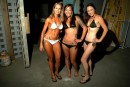 Windjammer Bikini Bash Round #15 - Photo #376184