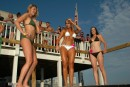 Windjammer Bikini Bash Round #15 - Photo #376198