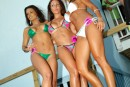 Windjammer Bikini Bash Round #15 - Photo #376232