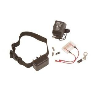 DT Systems No Bark Training Collar, Rechargeable 2554765