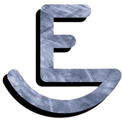 Texas Irons E Branding Iron