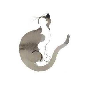 Cat Poster Print