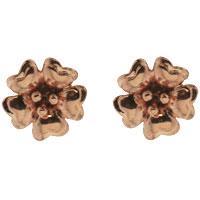 Earrings - STERLING SILVER BLOSSOMING TWO TONE CRYSTAL FLOWER STUD EARRINGS alternate image 1.