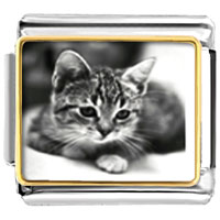 Italian Charms - cat in black & white charm photo italian charm Image.