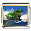 Surfing Frog Charm Photo Italian Charm