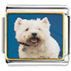 West Highland Terrier Charm Photo Italian Charm