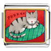 Sleeping Kitty Cat Charm Photo Italian Charm