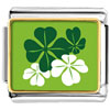 Green Four Leaf Clovers Charm Photo Italian Charm