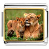 Gold Plated Animal Cub Photo Italian Charm Bracelets