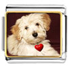 Puppy With Red Heart Charm Photo Italian Charm
