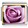 Blooming Rose Charm Photo Italian Charm