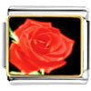 Red Rose Charm Photo Italian Charm