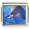 Smiling Dolphin Charm Photo Italian Charm